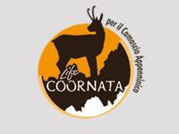 COORNATA_logo copia